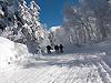 [写真]旭岳のコース