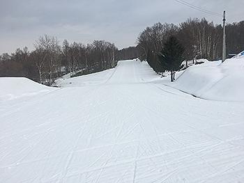 [写真]西岡競技場の雪の状況