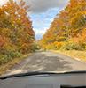 [写真]岩手県八幡平市の紅葉