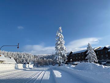 [写真]積雪のスキー場