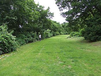 [写真]クロスカントリー専用の芝コース