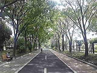 [写真]仙台堀川公園