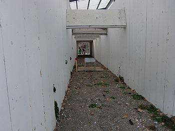 [写真]射場の内側