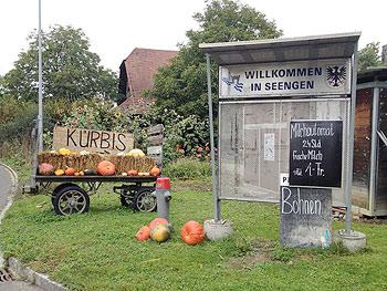 [写真]かぼちゃの直売所