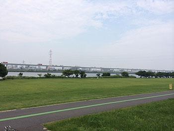 [写真]荒川河川敷。緑がきれいです