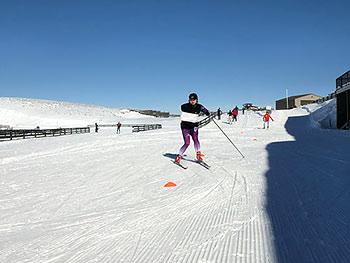 [写真]昨年のニュージーランド合宿でのクロスカントリ―スキートレーニング