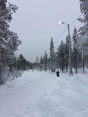 [写真]人工雪