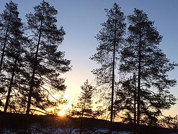 [写真]朝日が綺麗なボッカティの空