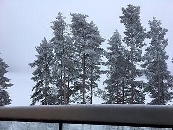 [写真]部屋から見えるどんよりとした空の景色