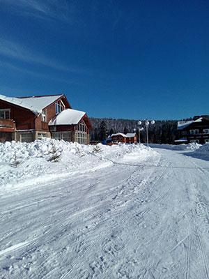 [写真]十分な積雪の風景