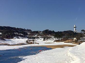 [写真]雪不足のピョンチャンパラリンピック会場