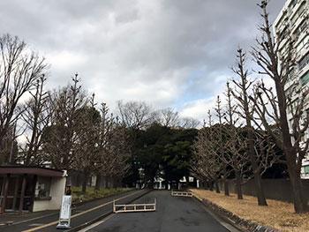 [写真]湯島合同庁舎入口