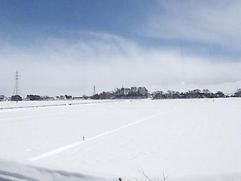 [写真]帰りの札幌、大雪でした