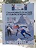 [写真]2017INAS世界大会のポスターです