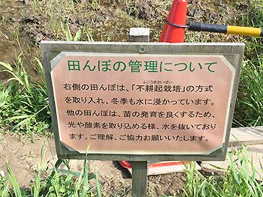 [写真]田んぼの学校