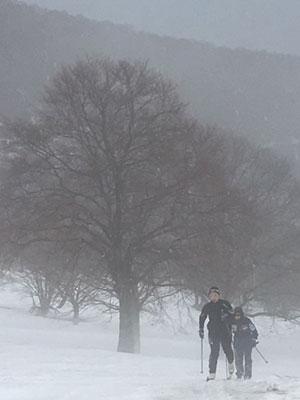 [写真]雨の笹ヶ峰