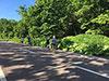 [写真]新緑の湖畔を走る