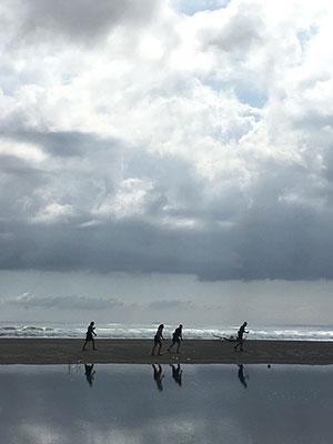 [写真]砂浜を走るパラノルディックチーム