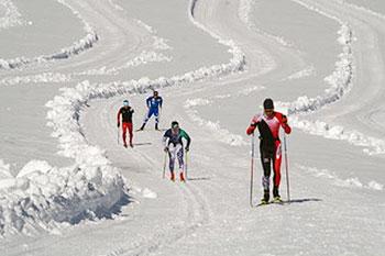 [写真]雪上トレーニングするパラノルディックスキー日本チーム4人