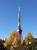 [写真]紅葉と東京タワー