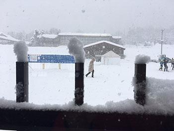 [写真]柵に積った雪