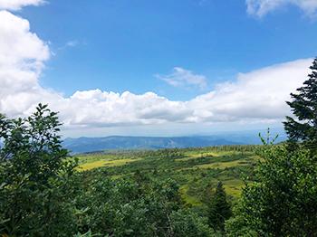 [写真]八甲田山からの下山途中
