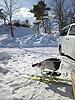 [写真]シットスキーと自宅前のコース