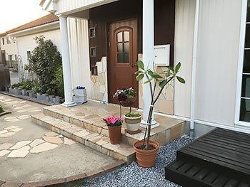 [写真]玄関先のプルメリアの木