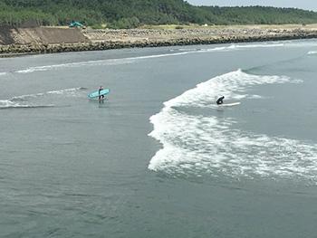 [写真]7月中旬、海の様子をチェック