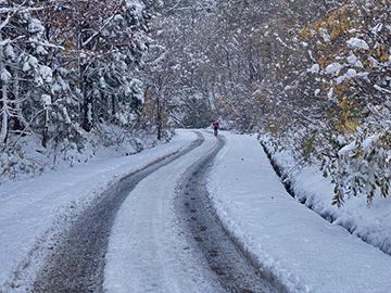 [写真]雪道をポールウォークで進む新田選手(11月上旬)