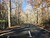 [写真]11月上旬奥入瀬渓流沿いの紅葉