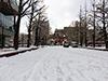 [写真]会社の下の広場の積雪