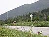 [写真]ローラースキーでトレーニング中の新田佳浩