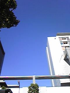 [写真]台風一過の青空