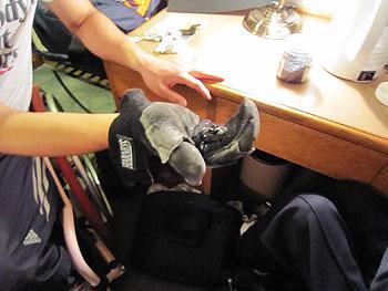 [写真]グローブをはめた手に自由樹脂を握る