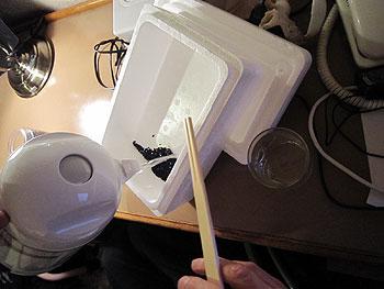 [写真]発砲スチロールの箱に入れた自由樹脂にお湯を入れる様子