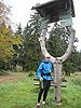 [写真]木を利用した案内板