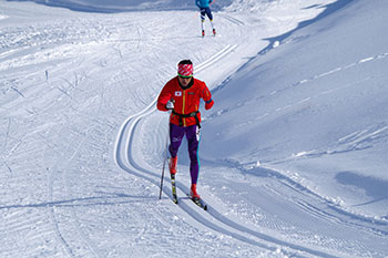 [写真]新田佳浩クロスカントリースキートレーニング
