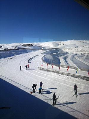 [写真]Snow Farmのクロスカントリースキーコース