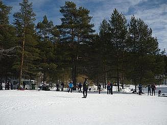 [写真]スキーレースの様子