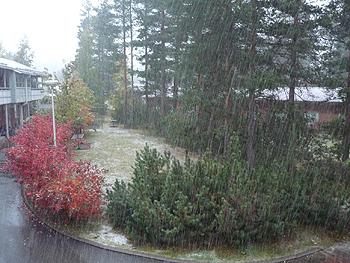 [写真]ボッカティに降る雪