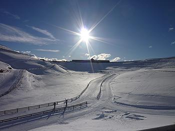 [写真]スキーコースから見るロッジ