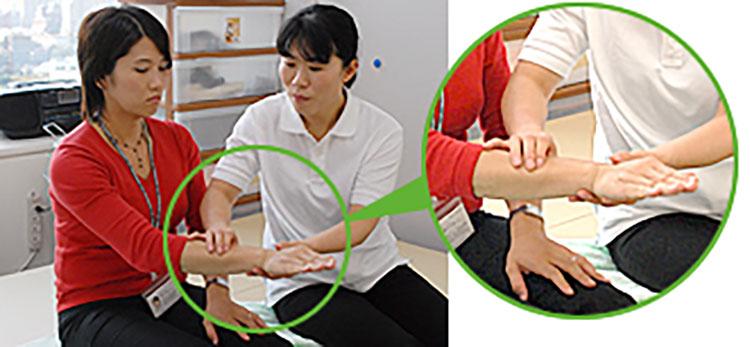 [写真]前腕の筋肉を押す