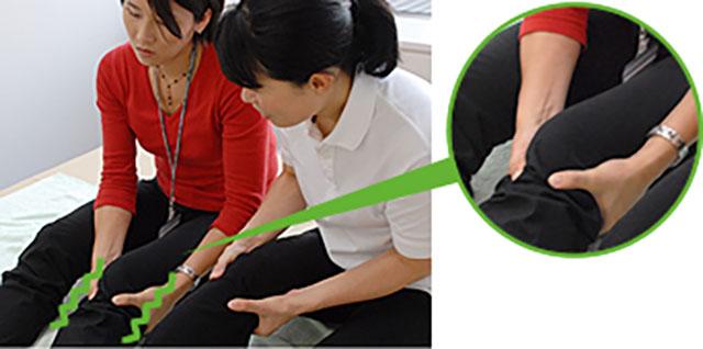 [写真]冷え性を解消する膝のあたり