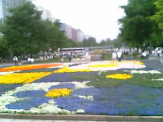 [写真]花でいっぱいの大通公園