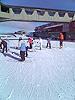 [写真]ニュージーランドのスキー場