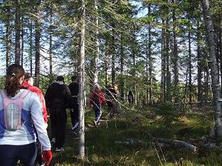 [写真]ハイキングの様子